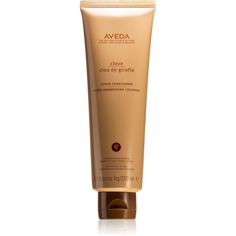 Aveda Clove odżywka do włosów farbowanych 250 ml