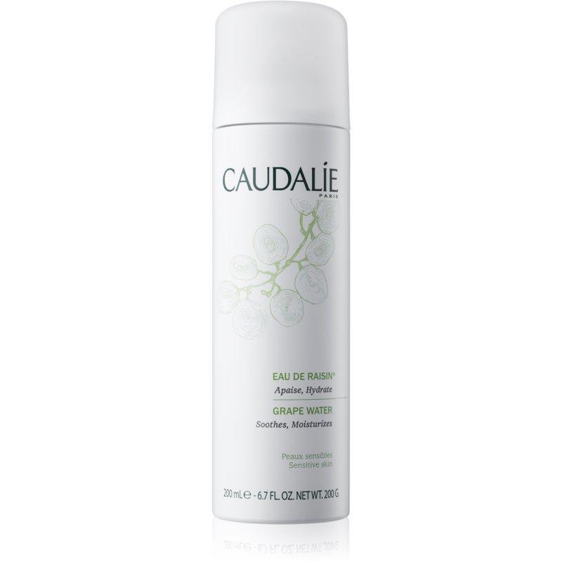 Caudalie Cleaners&Toners woda odświeżająca w sprayu do wszystkich rodzajów skóry, też wrażliwej 75 ml